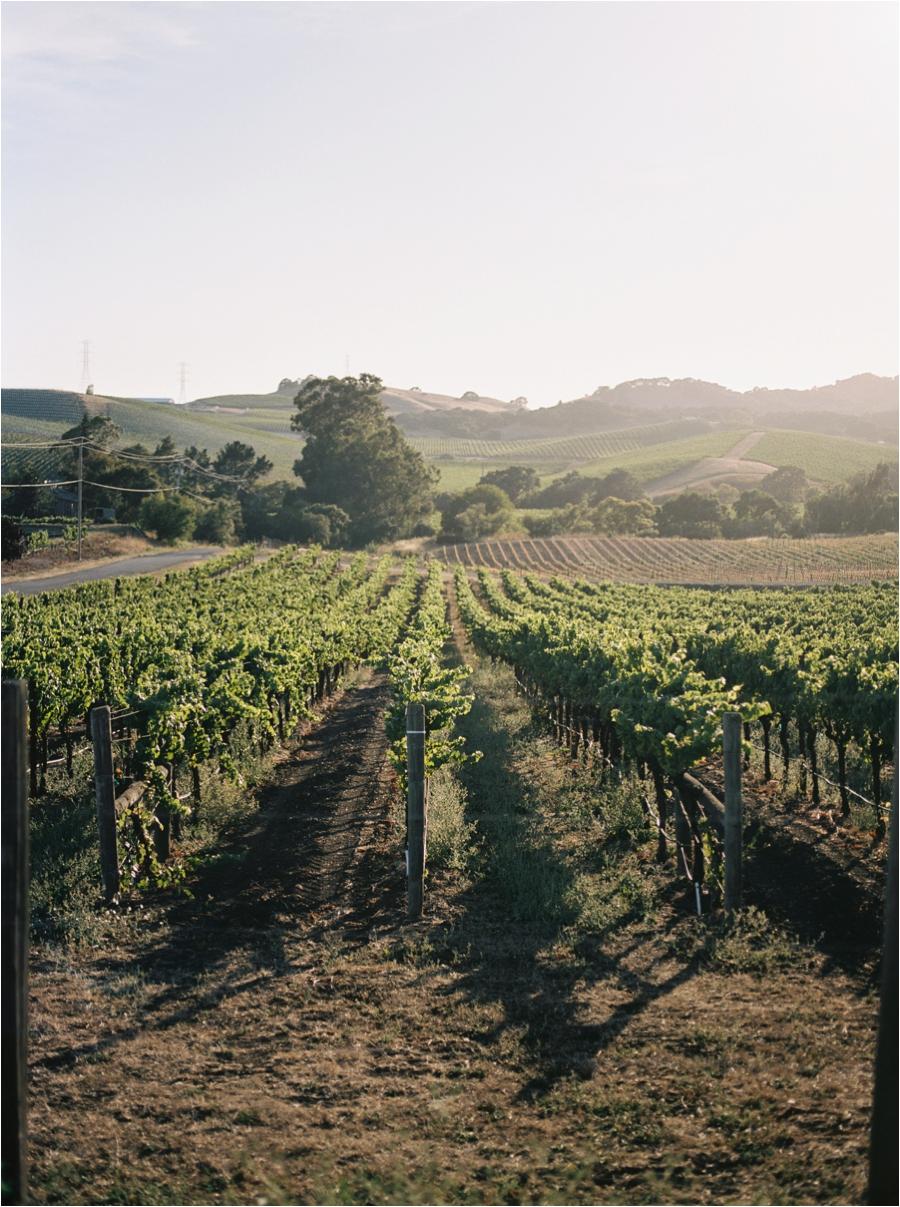 amy-cherry-travel-photographer-film-charleston-california-virginia-florida_0013