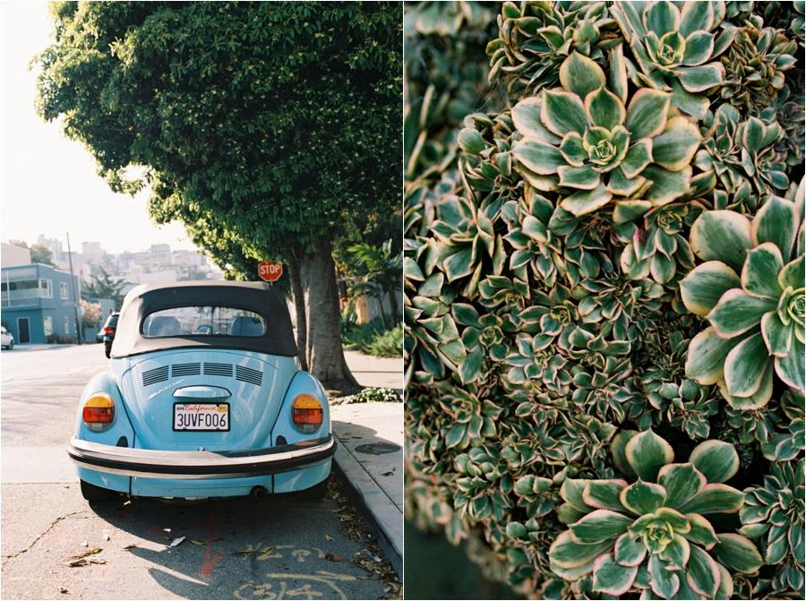 amy-cherry-travel-photographer-film-charleston-california-virginia-florida_0046